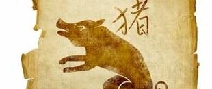 Horóscopo Chinês : O Porco em 2016