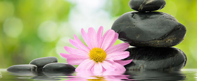 La De Beneficios De La La De Aromaterapia Aromaterapia Aromaterapia Beneficios De Beneficios Beneficios 0wNnOvm8