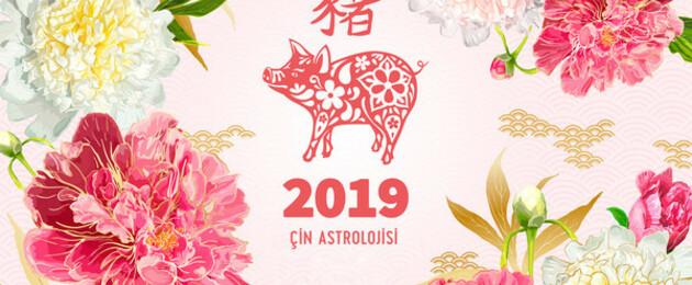 2019 çin Astrolojisi çin Burcunuzu Ve Burç Yorumlarınızı öğrenin